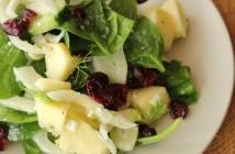 fenouil en salade noel