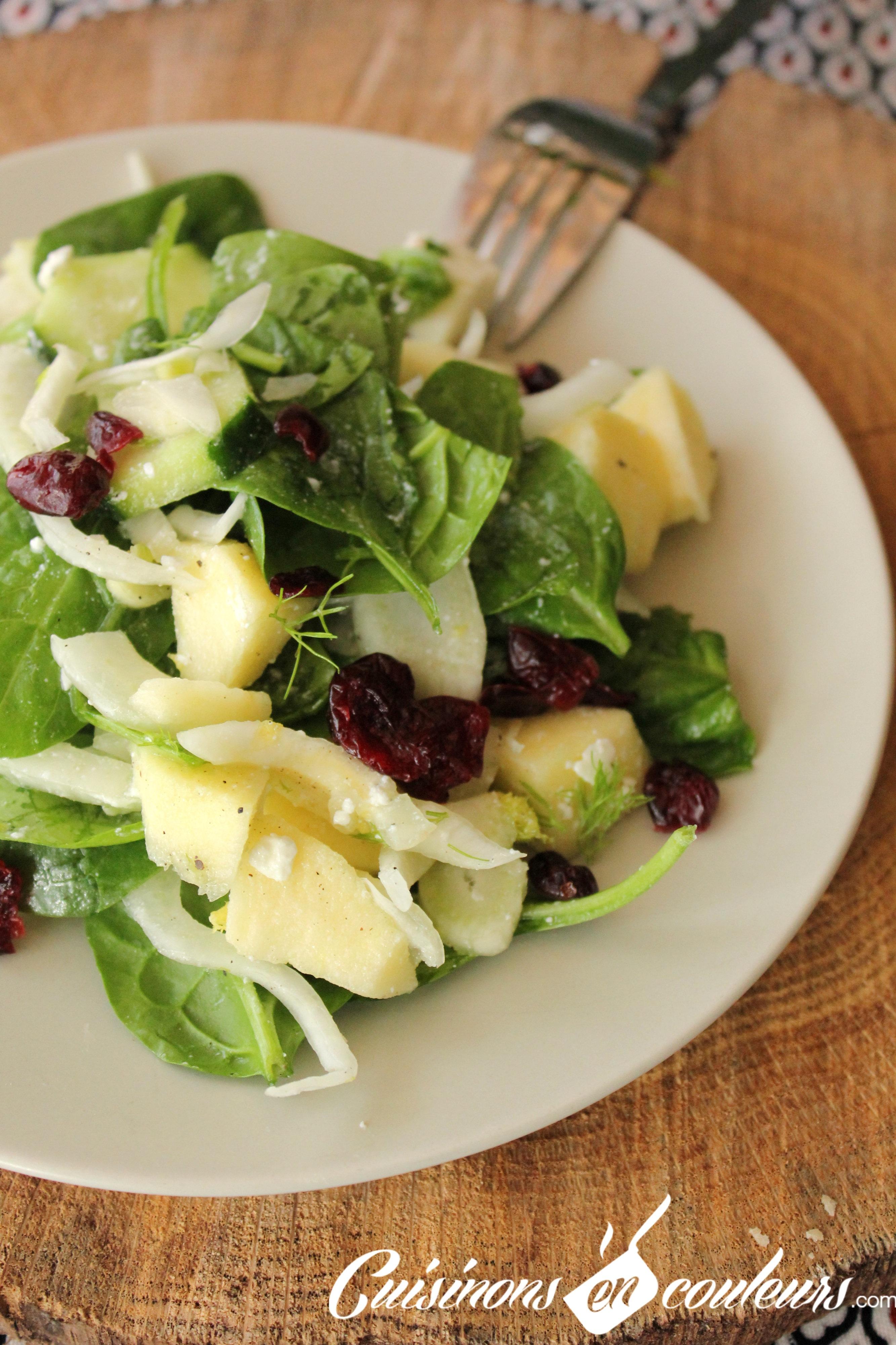 Salade de fenouil aux concombre cranberries pomme et feta cuisinons en couleurs - Comment cuisiner fenouil ...