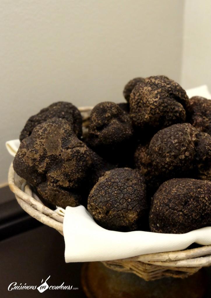 terres de truffes