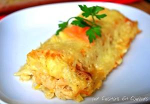 DSC_0664-300x208 - Cannelloni aux poireaux et saumon fumé