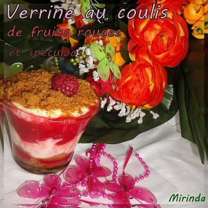 Verrine-au-coulis5-300x300 - Concours Cuisinons En Couleurs (fin)