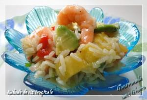 salade-de-riz-tropicale-300x205 - Concours Cuisinons En Couleurs (fin)