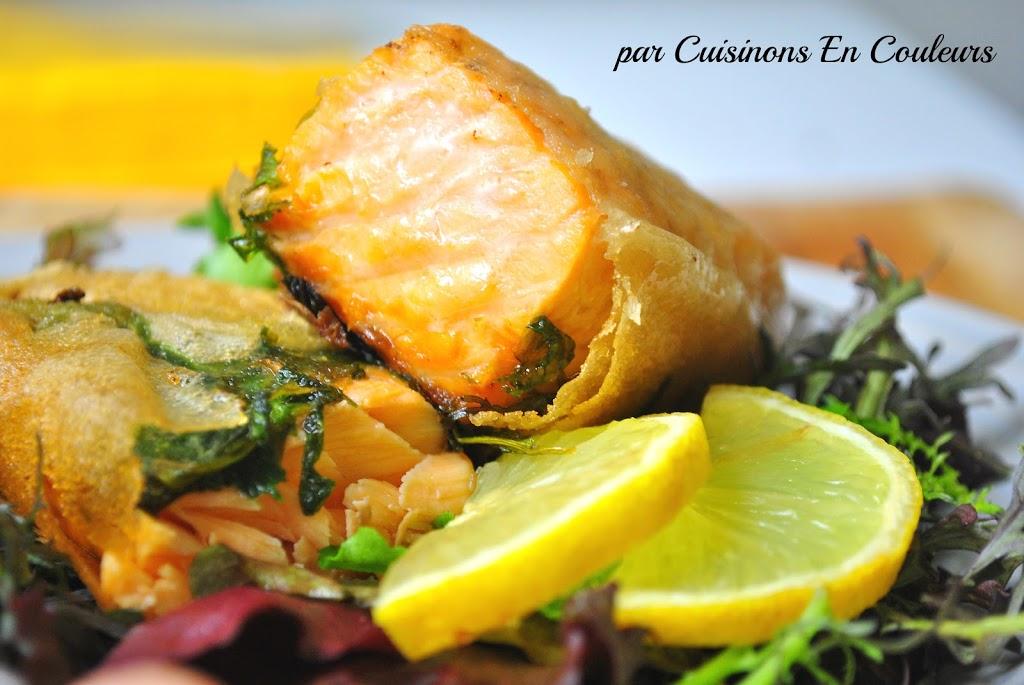 brick-de-saumon - Pavé de saumon en papillote de brick