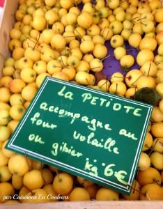 IMG_0084-234x300 - Tajine de poulet aux petiotes, oignons et raisins secs