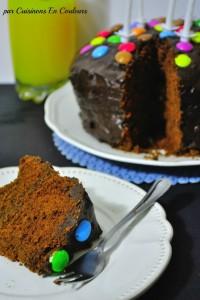 DSC_0255-200x300 - Gâteau tout simple au chocolat... mais en couleurs!