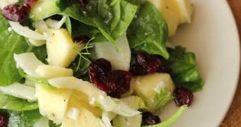 fenouil-en-salade-noel-351x185 - Cuisinons En Couleurs