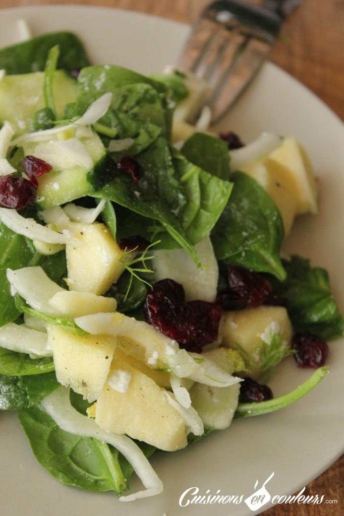 salade-fenouil-noel-682x1024 - Salade de fenouil aux concombre, cranberries, pomme et feta