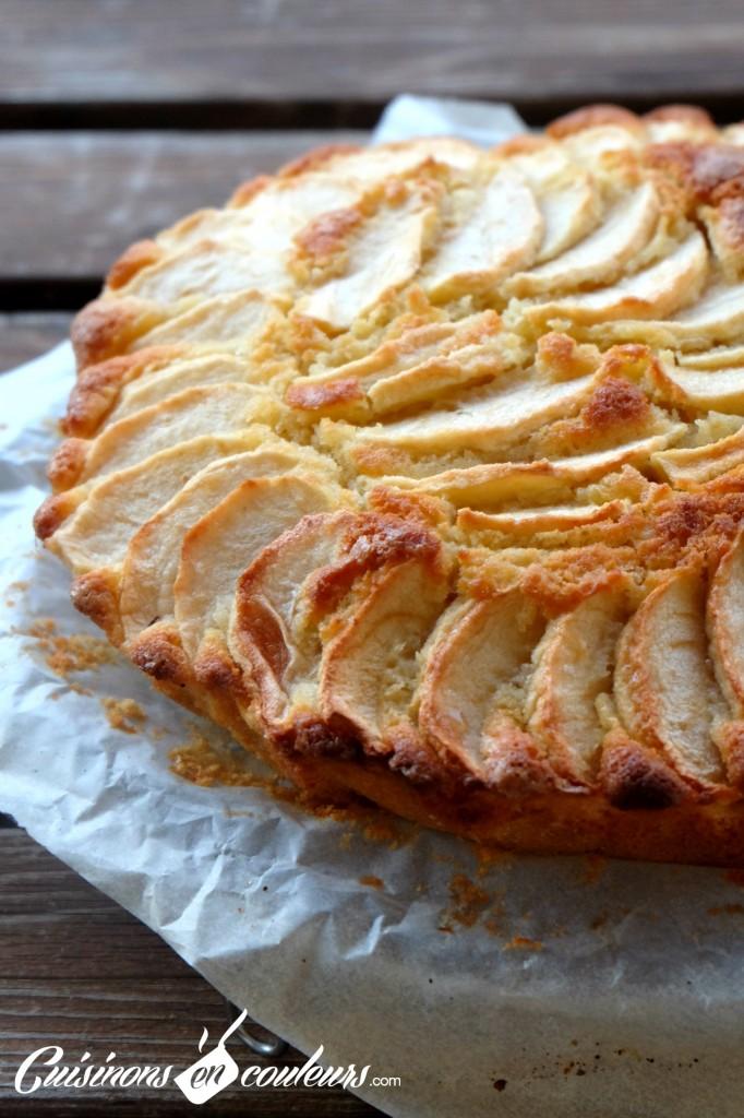 LE-gâteau-aux-pommes-682x1024 - Mi gâteau, mi tarte... fondant aux pommes Gala