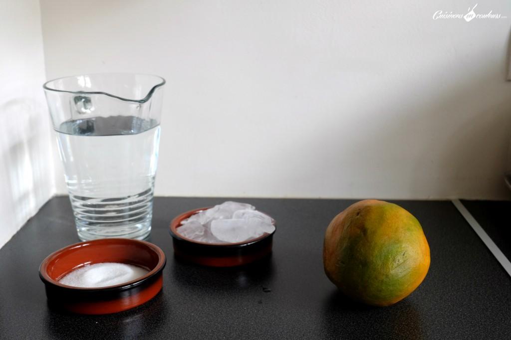 Ingredients-mangue-1024x682 - Agua de mango, un jus à la mangue venu tout droit du Mexique