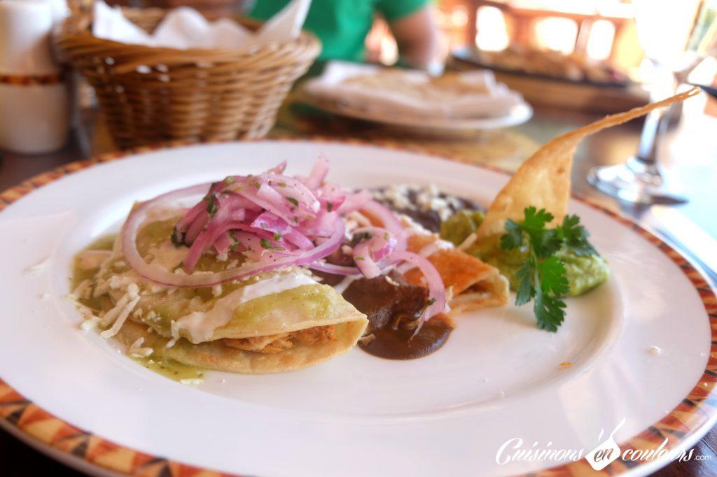 Enchiladas-Mexican-Food-1024x682 - 15 spécialités mexicaines à goûter absolument lors de votre voyage
