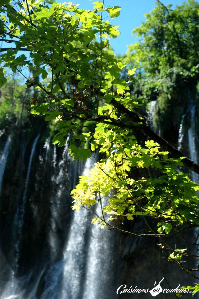 Chutes-a-Plitvices-682x1024 - Deux semaines entre la Croatie, la Bosnie-Herzégovine et le Monténégro