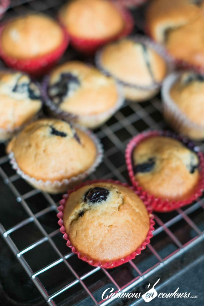 Muffins-nectarines-et-myrtilles-6-683x1024 - Muffins aux nectarines et aux myrtilles