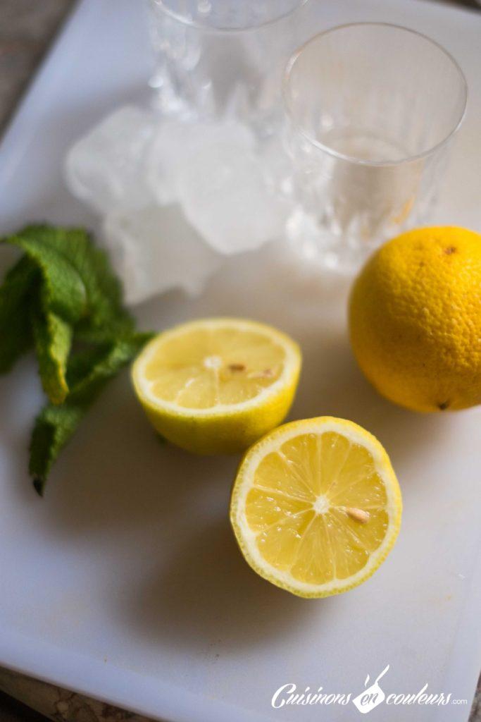 Lemon-Mint-5-683x1024 - Lemon mint, une citronnade à la menthe