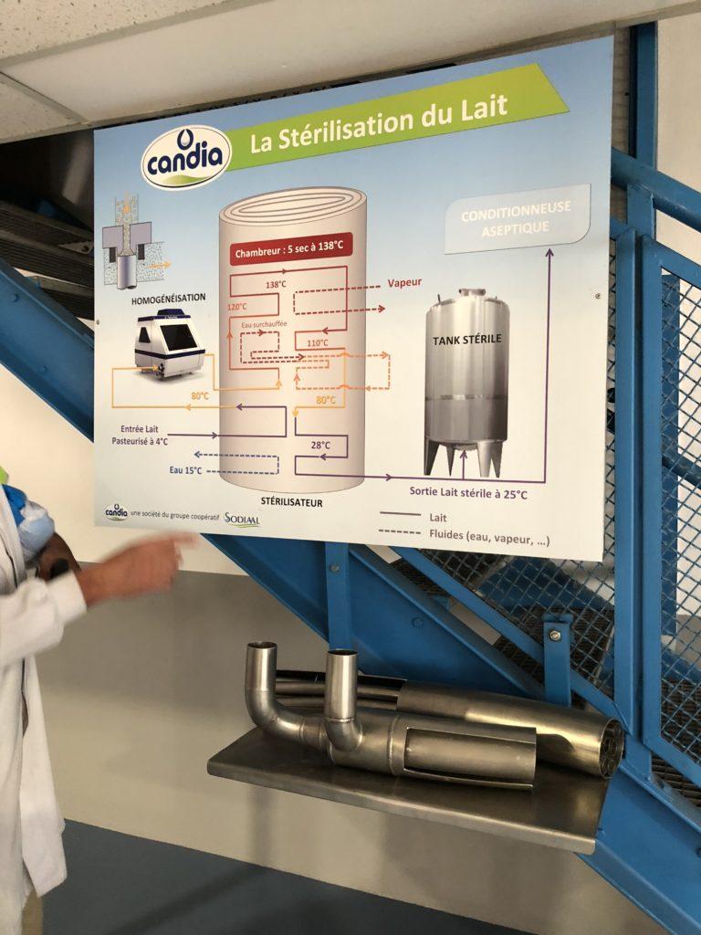 IMG_3842-e1530516996955-768x1024 - Immersion dans une ferme Candia avec Les Laitiers Responsables