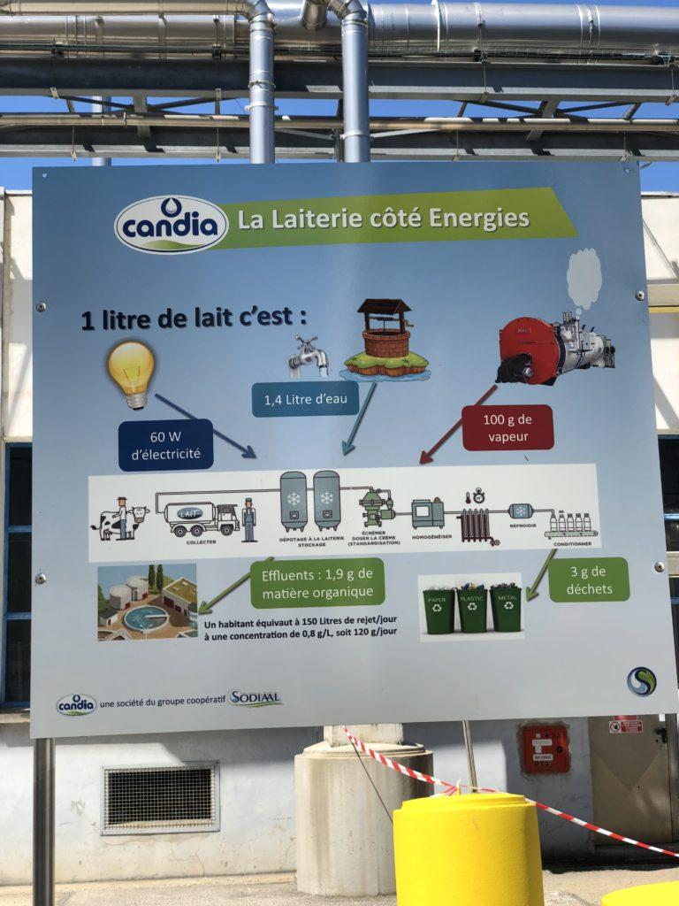 IMG_9006-e1530515642591-768x1024 - Immersion dans une ferme Candia avec Les Laitiers Responsables