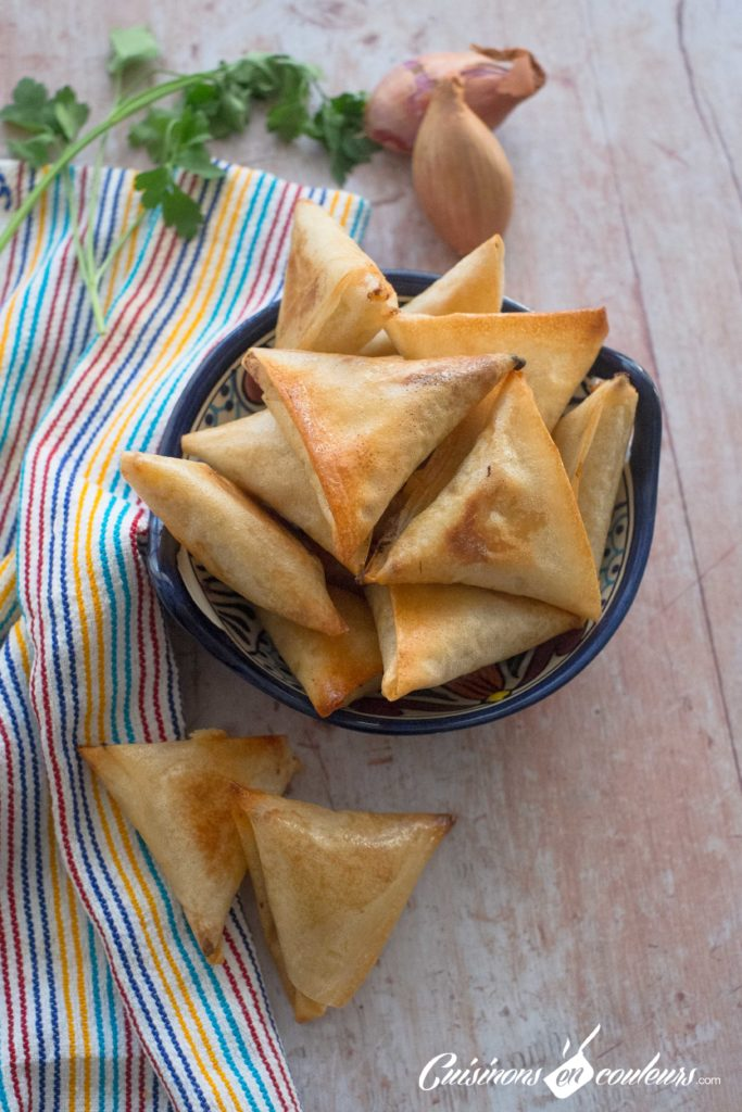 Briouates-fromage-oignons-4-683x1024 - 10 idées de farces pour vos briouates