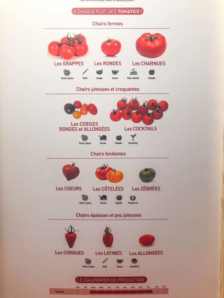 tomates-serre-2-768x1024 - CuTE, Cultivons le goût de l'Europe