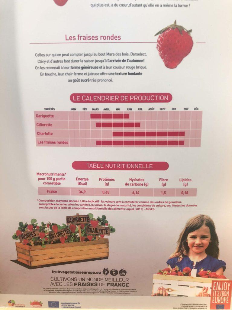 tomates-serre-6-768x1024 - CuTE, Cultivons le goût de l'Europe